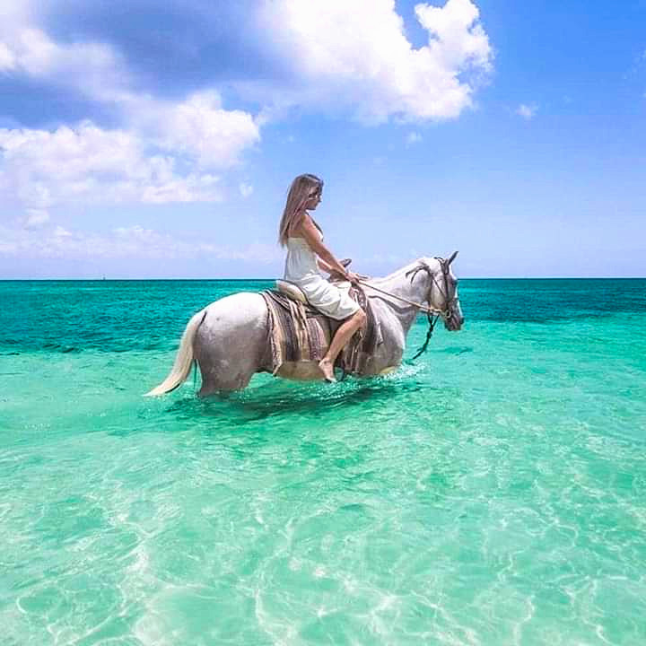 Cozumel Horse Back Riding Tour